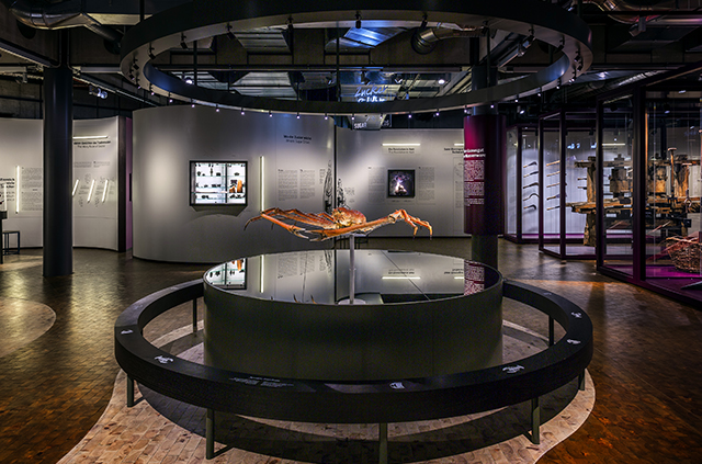 LED Ausstellungsbeleuchtung